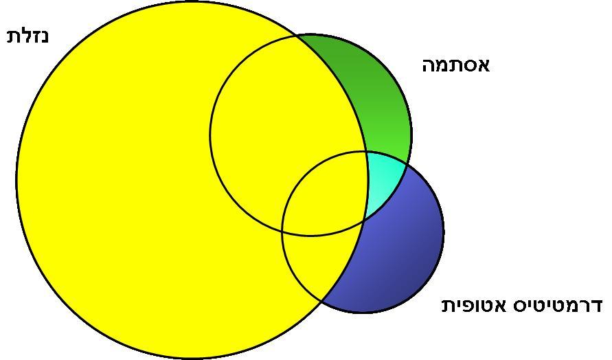 [Image: %D7%90%D7%99%D7%95%D7%A8%20%D7%90%D7%9C%...%D7%94.jpg]